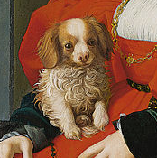 Lady with Lap Dog closeup