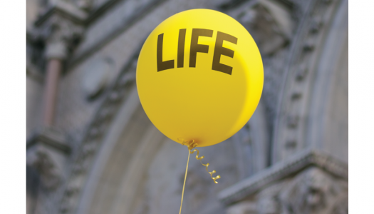 The Talent of the Pro-Life Generation